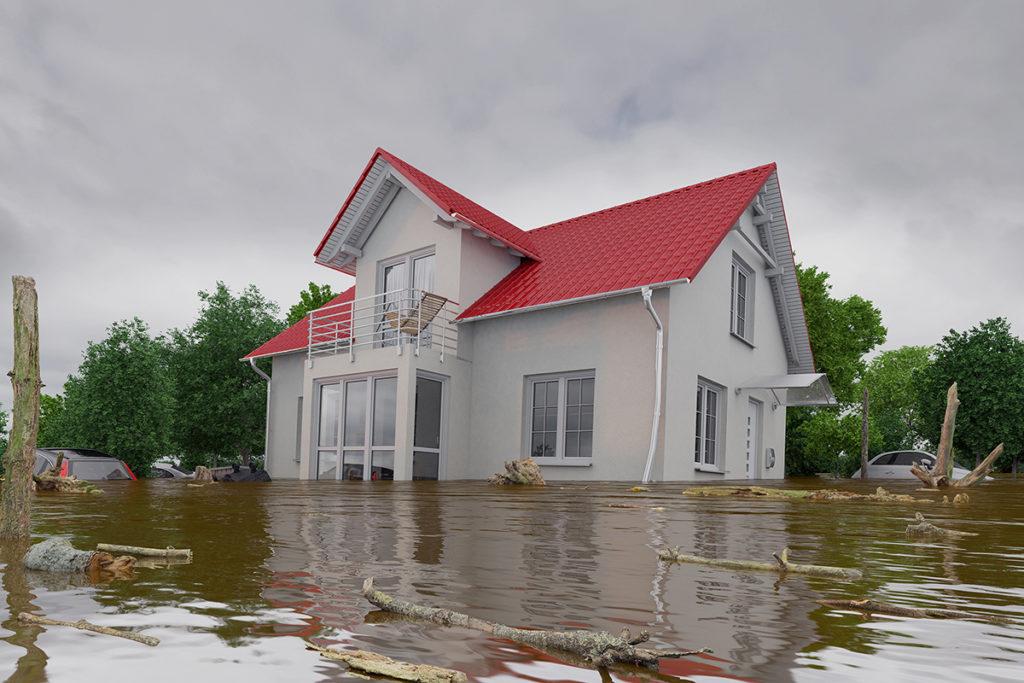 Neptune Flood